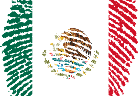 Mexican flag and passport