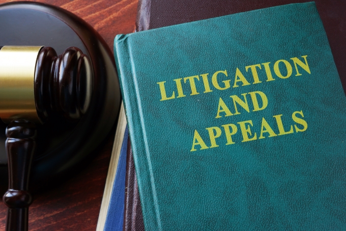Canadian Immigration lawyer assisting client with Litigation and Appeals