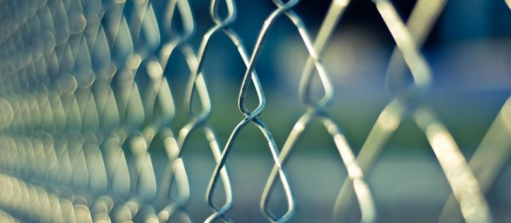 A chain link fence in sunlight.